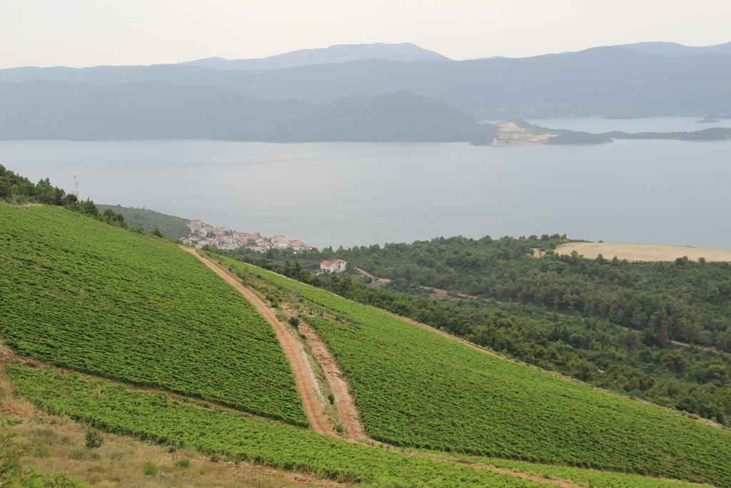 WiNe Thematic wine route Peljesac